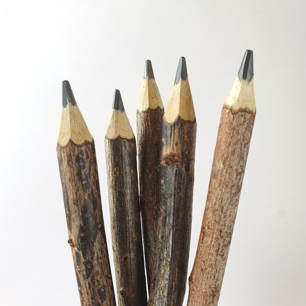 Wooden Twig Pencil